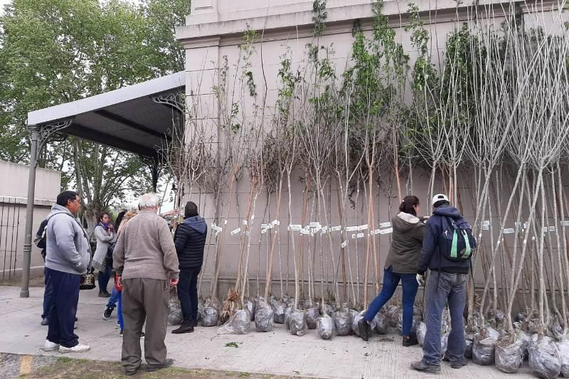 Entregaron nuevos árboles a los vecinos para la forestación en zona urbana